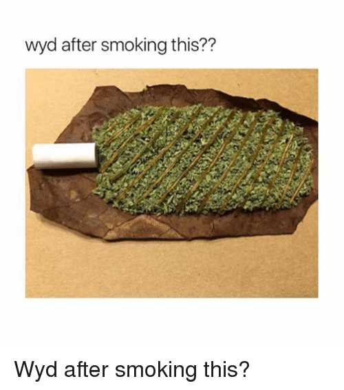 Memes, Smoking, and Wyd: wyd after smoking this?? Wyd after smoking this?