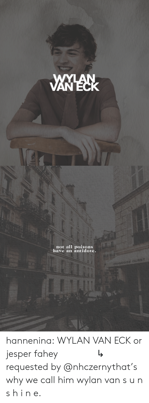 requested: WYLAN  VANECK   not all poisons  have an antidote.  FRANCOISE DURST hannenina:  WYLAN VAN ECK or jesper fahey       ↳   requested by @nhczernythat's why we call him wylan van s u n s h i n e.