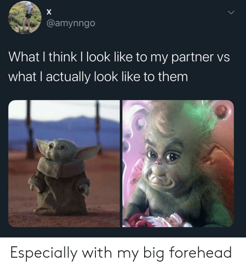 big forehead: X  @amynngo  What I think I look like to my partner vs  what I actually look like to them Especially with my big forehead