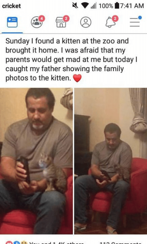 Family Photos: X  cricket  ,ill 100% 7:41 AM  2  Sunday I found a kitten at the zoo and  brought it home. I was afraid that my  parents would get mad at me but today I  caught my father showing the family  photos to the kitter.
