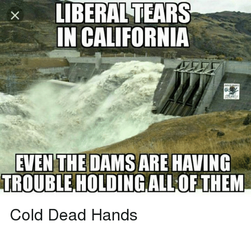 cold-dead-hands: x LIBERALTEARS  IN CALIFORNIA  EVEN THE DAMS ARE HAVING  TROUBLE HOLDING ALL OF THEM Cold Dead Hands