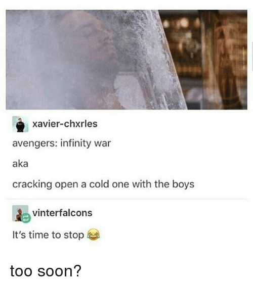 Memes, Soon..., and Avengers: Xavier-chxrles  avengers: infinity war  aka  cracking open a cold one with the boys  vinterfalcons  It's time to stop too soon?