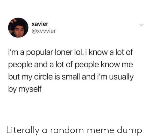 loner: xavier  i'm a popular loner lol. i know a lot of  people and a lot of people know me  but my circle is small and i'm usually  by myself Literally a random meme dump