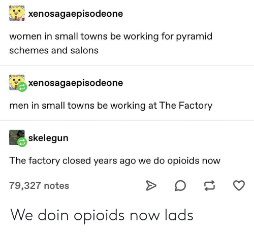 pyramid: xenosagaepisodeone  women in small towns be working for pyramid  schemes and salons  xenosagaepisodeone  men in small towns be working at The Factory  skelegun  The factory closed years ago we do opioids now  O  79,327 notes We doin opioids now lads