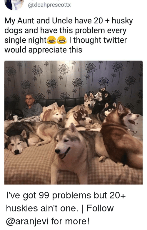 Ive Got 99 Problems: @xleahprescottx  My Aunt and Uncle have 20 + husky  dogs and have this problem every  single nig thought twitter  would appreciate this I've got 99 problems but 20+ huskies ain't one. | Follow @aranjevi for more!