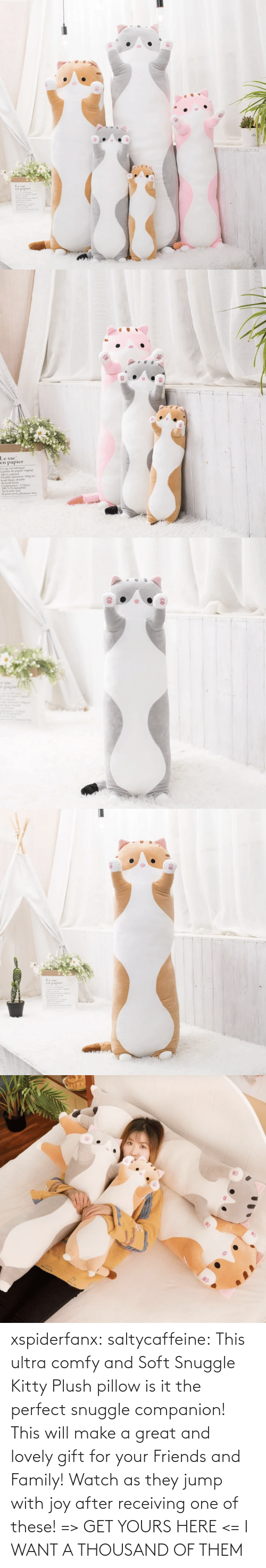 I Want: xspiderfanx:  saltycaffeine: This ultra comfy and Soft Snuggle Kitty Plush pillow is it the perfect snuggle companion! This will make a great and lovely gift for your Friends and Family! Watch as they jump with joy after receiving one of these! => GET YOURS HERE <=    I WANT A THOUSAND OF THEM