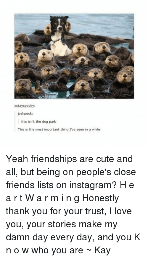Dog Park: xstayspooky:  oshpeck:  this isn't the dog park  This is the most important thing I've seen in a while Yeah friendships are cute and all, but being on people's close friends lists on instagram? H e a r t W a r m i n g Honestly thank you for your trust, I love you, your stories make my damn day every day, and you K n o w who you are ~ Kay