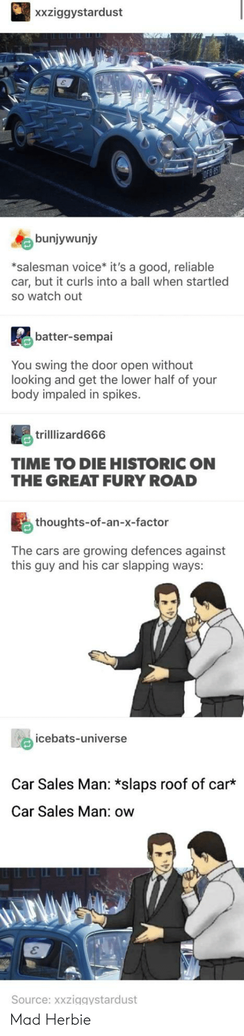 the cars: xxziggystardust  bunjywunjy  *salesman voice* it's a good, reliable  car, but it curls into a ball when startled  so watch out  batter-sempai  You swing the door open without  looking and get the lower half of your  body impaled in spikes.  trilllizard666  TIME TO DIE HISTORIC ON  THE GREAT FURY ROAD  thoughts-of-an-x-factor  The cars are growing defences against  this guy and his car slapping ways:  icebats-universe  Car Sales Man: *slaps roof of car  Car Sales Man: ow  Source: xxziggystardust Mad Herbie