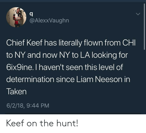 liam neeson: .y @AlexxVaughn  Chief Keef has literally flown from CHI  to NY and now NY to LA looking for  6ix9ine. I haven't seen this level of  determination since Liam Neeson in  Taken  6/2/18, 9:44 PM Keef on the hunt!