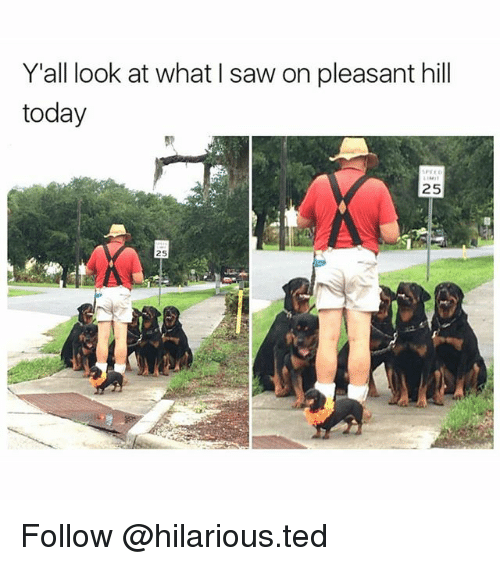 Funny, Ted, and Today: Y all look at what Isaw on pleasant hill  today  25  25 Follow @hilarious.ted