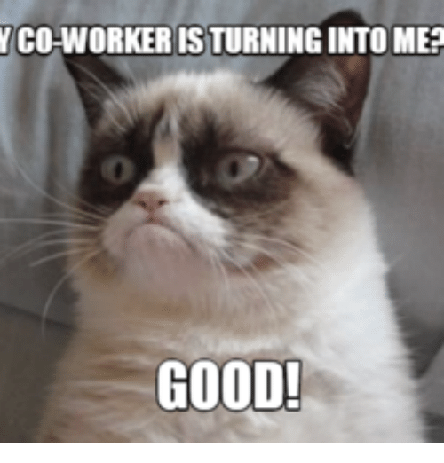 Funnyjunk Memes : Y co worker is turningintome good meme on sizzle