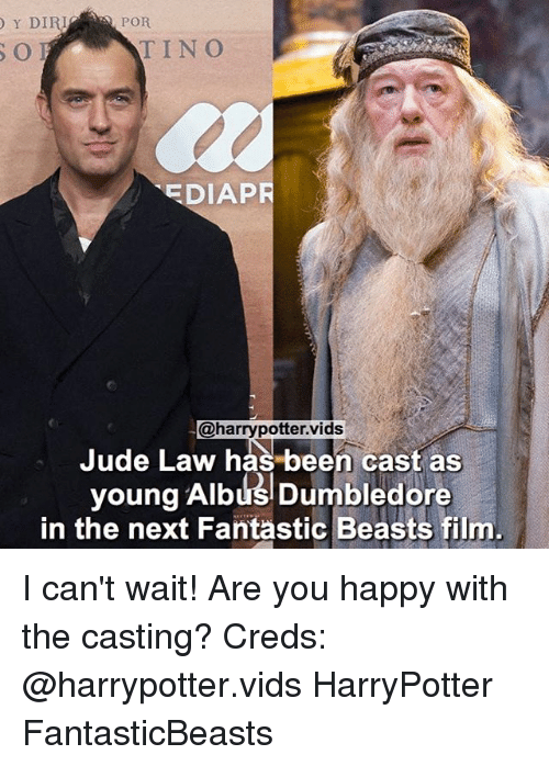 Dumbledore, Memes, and Happy: Y DIRI  POR  EDIAPR  @harrypotter. vids  Jude Law has been cast as  young Albus Dumbledore  in the next Fantastic Beasts film I can't wait! Are you happy with the casting? Creds: @harrypotter.vids HarryPotter FantasticBeasts