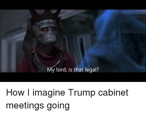 Politics, Trump, and How: y lord, is that legal? How I imagine Trump cabinet meetings going