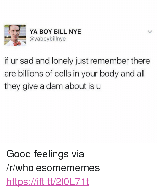 """Bill Nye, Good, and Sad: YA BOY BILL NYE  @yaboybillnye  if ur sad and lonely just remember there  are billions of cells in your body and all  they give a dam about is u <p>Good feelings via /r/wholesomememes <a href=""""https://ift.tt/2l0L71t"""">https://ift.tt/2l0L71t</a></p>"""