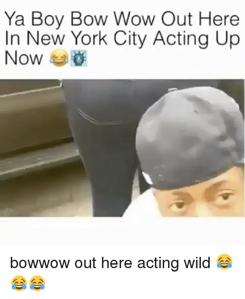 Memes, New York, and Wow: Ya Boy Bow Wow Out Here  In New York City Acting Up  Now bowwow out here acting wild 😂😂😂
