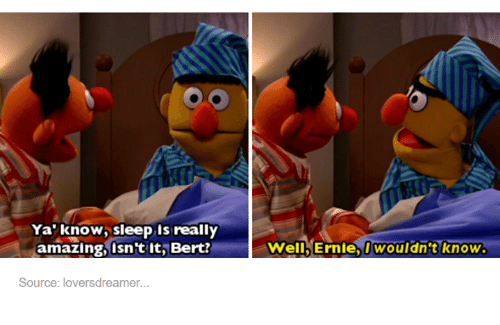 Girl Memes: Ya know, sleep is really  amazing, isn't it, Bert?  Source: loversdreamer.  well Ernie, I wouldn't know.