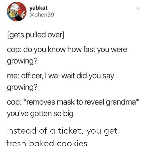 did-you-say: yabkat  @ohen39  [gets pulled over]  cop: do you know how fast you were  growing?  me: officer, I wa-wait did you say  growing?  cop: *removes mask to reveal grandma*  you've gotten so big Instead of a ticket, you get fresh baked cookies