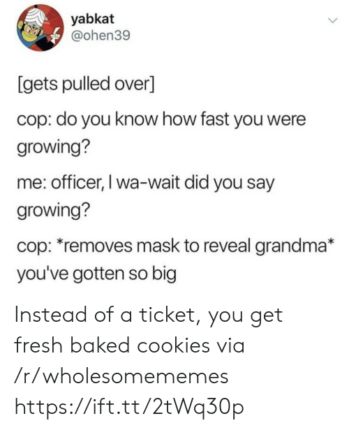 did-you-say: yabkat  @ohen39  [gets pulled over]  cop: do you know how fast you were  growing?  me: officer, I wa-wait did you say  growing?  cop: *removes mask to reveal grandma*  you've gotten so big Instead of a ticket, you get fresh baked cookies via /r/wholesomememes https://ift.tt/2tWq30p