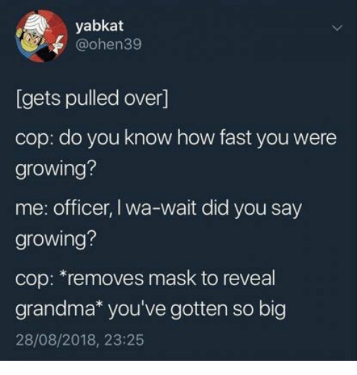 did-you-say: yabkat  @ohen39  [gets pulled over]  cop: do you know how fast you were  growing?  me: officer, I wa-wait did you say  growing?  cop: *removes mask to reveal  grandma* you've gotten so big  28/08/2018, 23:25