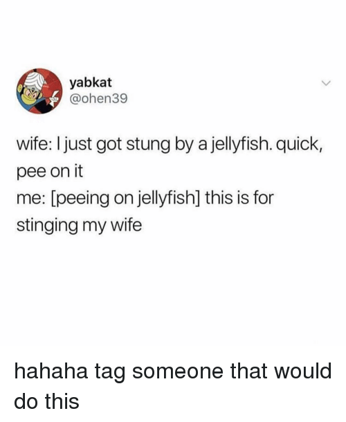 stinging: yabkat  @ohen39  wife: I just got stung by a jellyfish. quick,  pee on it  me: [peeing on jellyfish] this is for  stinging my wife hahaha tag someone that would do this