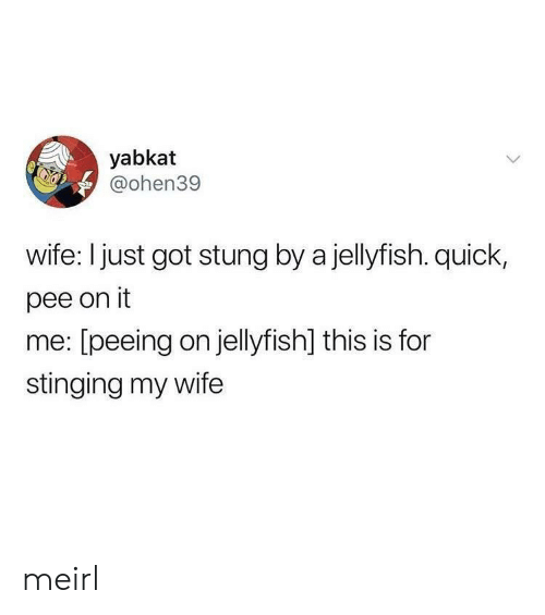 stinging: yabkat  @ohen39  wife: I just got stung by a jellyfish. quick,  pee on it  me: [peeing on jellyfish] this is for  stinging my wife meirl