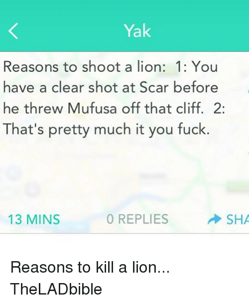 Lions: Yak  Reasons to shoot a lion: 1: You  have a clear shot at Scar before  he threw Mufusa off that cliff. 2  That's pretty much it you fuck.  SHA  13 MINS  0 REPLIES Reasons to kill a lion... TheLADbible