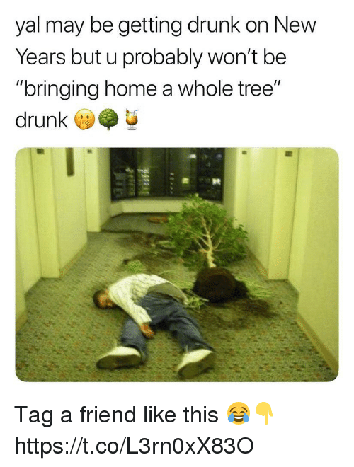 "Drunk, Memes, and Home: yal may be getting drunk on New  Years but u probably won't be  ""bringing home a whole tree""  drunk Tag a friend like this 😂👇 https://t.co/L3rn0xX83O"