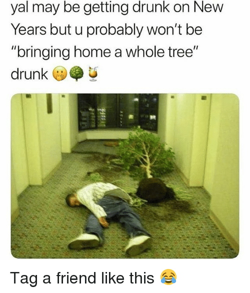 "Drunk, Funny, and Home: yal may be getting drunk on New  Years but u probably won't be  ""bringing home a whole tree""  drunk  (リ Tag a friend like this 😂"