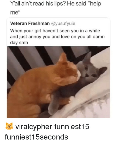 "Funny, Love, and Smh: Y'all ain't read his lips? He said ""help  me  I1  Veteran Freshman @yusufyuie  When your girl haven't seen you in a while  and just annoy you and love on you all damn  day smh 🐱 viralcypher funniest15 funniest15seconds"