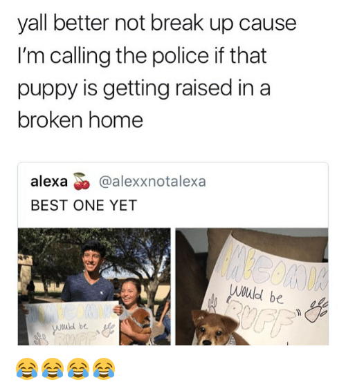 Memes, Police, and Best: yall better not break up cause  I'm calling the police if that  puppy is getting raised in a  broken home  alexa @alexxnotalexa  BEST ONE YET  be 😂😂😂😂