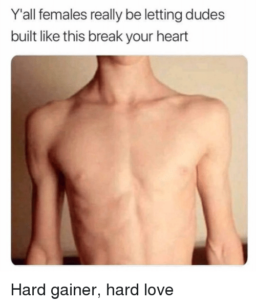 Love, Memes, and Break: Y'all females really be letting dudes  built like this break your heart Hard gainer, hard love