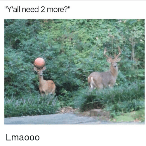 """Funny, More, and Yall: """"Y'all need 2 more?"""" Lmaooo"""