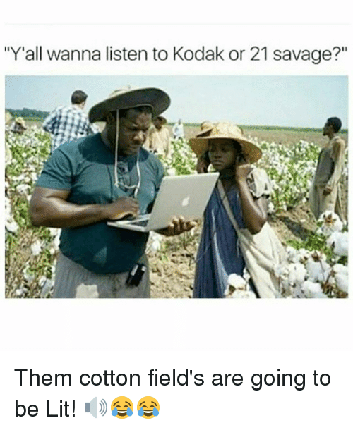 "memes: ""Y'all wanna listen to Kodak or 21 savage?"" Them cotton field's are going to be Lit! 🔊😂😂"
