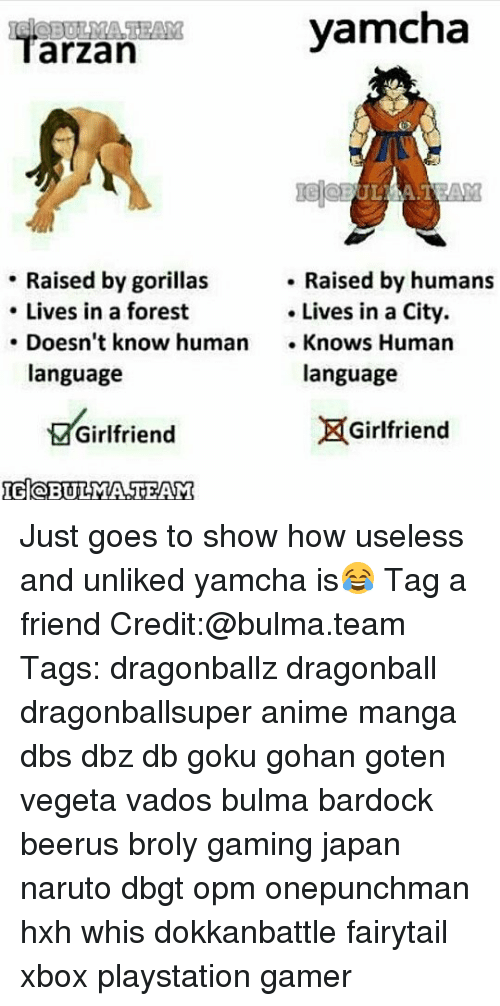 Anime, Broly, and Bulma: yamoha  arzan  ULAAT  Raised by humans  Raised by gorillas  Lives in a forest  Lives in a City.  Doesn't know human  Knows Human  language  language  Girlfriend  Girlfriend  IGloBUILMA TEAM Just goes to show how useless and unliked yamcha is😂 Tag a friend Credit:@bulma.team Tags: dragonballz dragonball dragonballsuper anime manga dbs dbz db goku gohan goten vegeta vados bulma bardock beerus broly gaming japan naruto dbgt opm onepunchman hxh whis dokkanbattle fairytail xbox playstation gamer