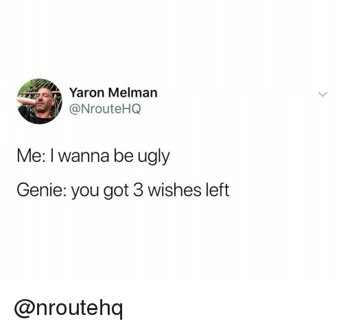 Ugly, Dank Memes, and Got: Yaron Melman  NrouteHQ  Me: I wanna be ugly  Genie: you got 3 wishes left @nroutehq