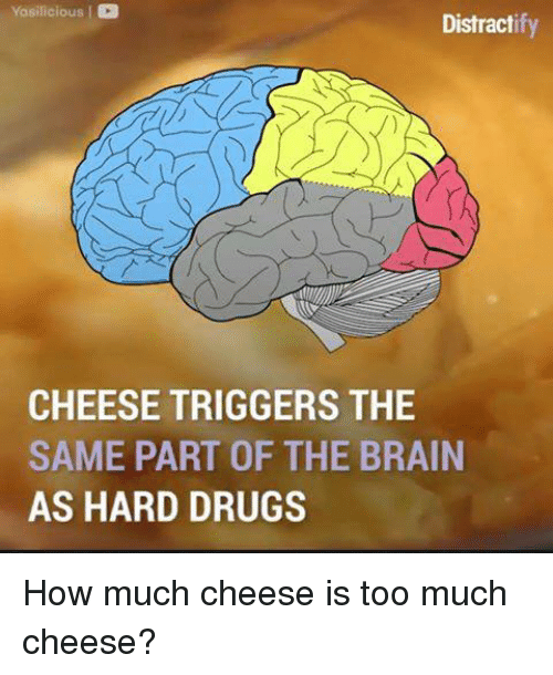 Brains, Memes, and Too Much: Yasilicious I  Distract  CHEESE TRIGGERS THE  SAME PART OF THE BRAIN  AS HARD DRUGS How much cheese is too much cheese?