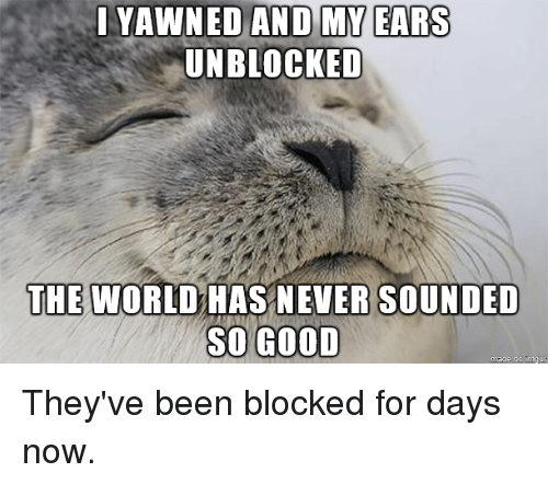 Good, World, and Never: YAWNED AND MY EARS  UNBLOCKED  THE WORLD HAS NEVER SOUNDED  SO GOOD They've been blocked for days now.