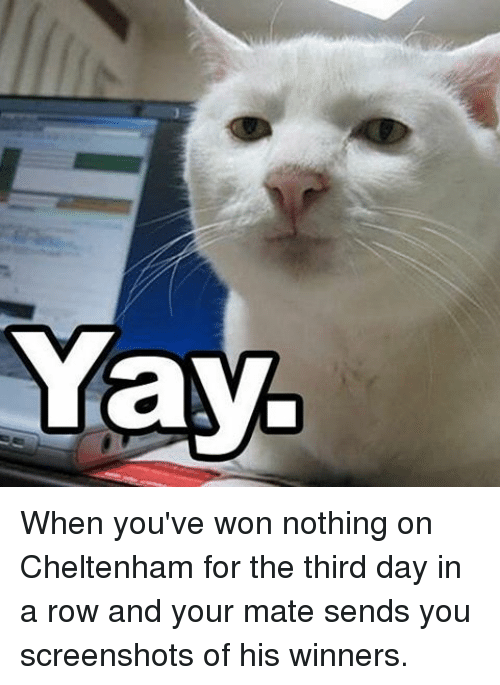 third day: Yay When you've won nothing on Cheltenham for the third day in a row and your mate sends you screenshots of his winners.