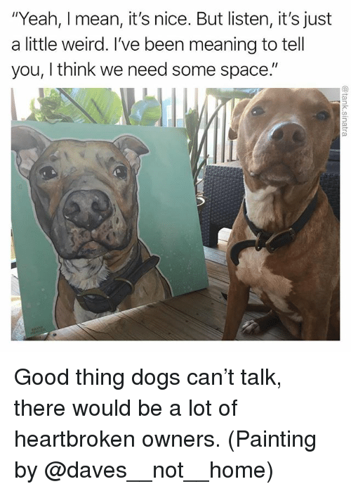 "Dogs, Funny, and Weird: ""Yeah, I mean, it's nice. But listen, it's just  a little weird. I've been meaning to tell  you, I think we need some space."" Good thing dogs can't talk, there would be a lot of heartbroken owners. (Painting by @daves__not__home)"