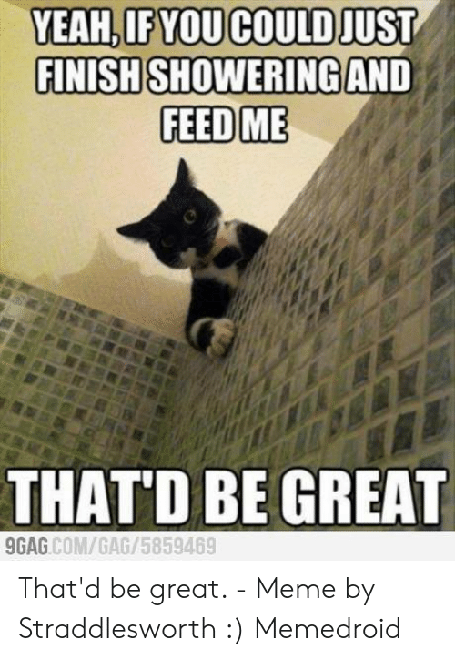 That D Be Great Meme: YEAH.IF YOU COULD JUST  FINISHSHOWERING AND  FEED ME  THAT'D BE GREAT  GAG COM/GAG/5859469 That'd be great. - Meme by Straddlesworth :) Memedroid