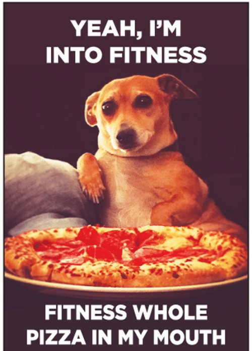 Fitness Whole Pizza: YEAH, IM  INTO FITNESS  FITNESS WHOLE  PIZZA IN MY MOUTH