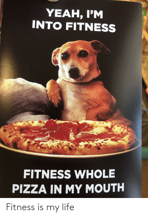 Fitness Whole Pizza: YEAH, I'M  INTO FITNESS  FITNESS WHOLE  PIZZA IN MY MOUTH Fitness is my life