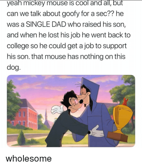 College, Dad, and Yeah: yeah mickey mouse is cool and all, but  can we talk about goofy for a sec?? he  was a SINGLE DAD who raised his son,  and when he lost his job he went back to  college so he could get a job to support  his son. that mouse has nothing on this  dog wholesome
