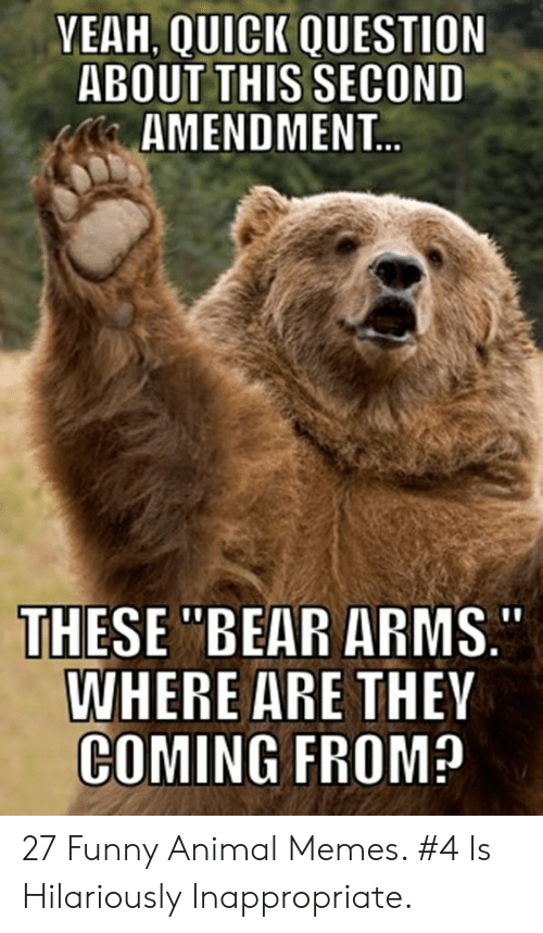 """Hilariously Inappropriate: YEAH, QUICK QUESTION  ABOUT THIS SECOND  AMENDMENT...  THESE """"BEAR ARMS.  WHERE ARE THEY  COMING FROM? 27 Funny Animal Memes. #4 Is Hilariously Inappropriate."""