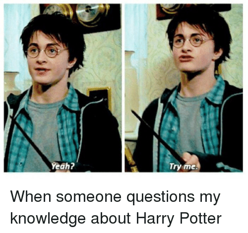 Memes, Try Me, and Knowledge: Yeah?  Try me. When someone questions my knowledge about Harry Potter