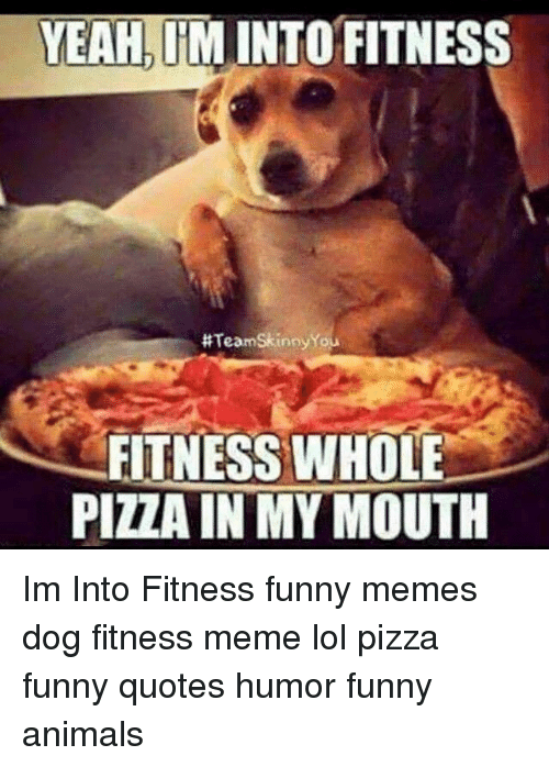 Fitness Meme: YEAHIM INTO FITNESS  #TeamSkinnyYou  FITNESS WHOLE  PIZZA IN MY MOUTH Im Into Fitness funny memes dog fitness meme lol pizza funny quotes humor funny animals