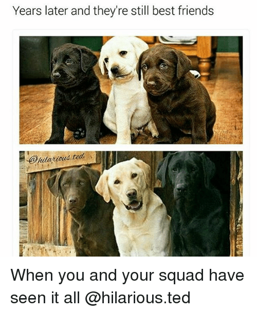 best friend: Years later and they're still best friends  oud .teal When you and your squad have seen it all @hilarious.ted