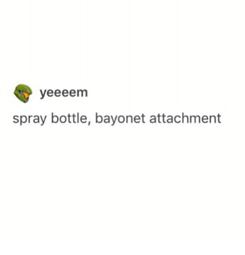 Ironic, Bayonet, and Spray Bottle: yeeeenm  spray bottle, bayonet attachment