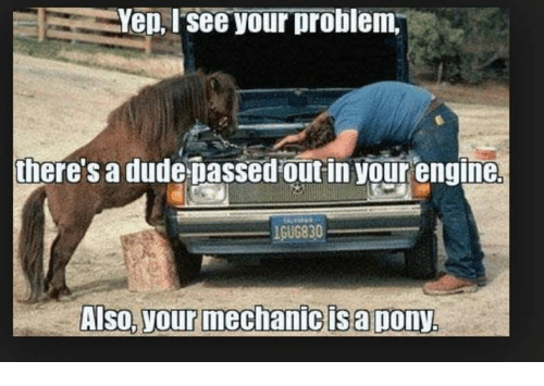mechanic: Yep, see your problem.  there's a dude Dassed out in your engine  lGUG830  Also, your mechanic sapony.