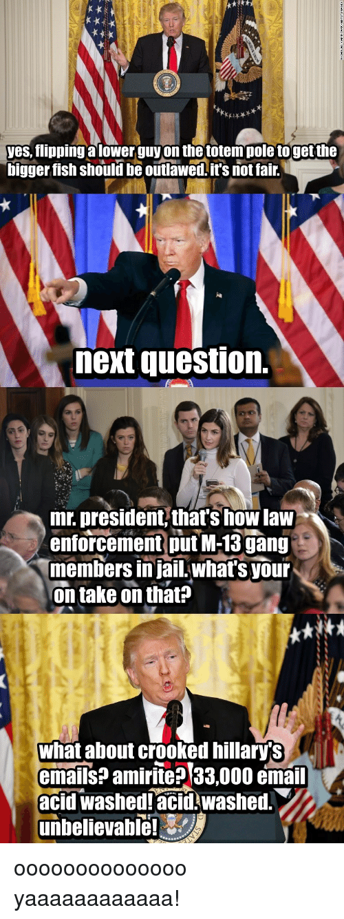 Its Not Fair: yes, flipping a lower guy on the totempole togetthe  bigger fish should be outlawed.it's not fair.  next question.  mr. president, that's how law  enforcement ut M-13gang  members in jail.what's your  on take on thats  what about crooked hillary's  emails? amirite? 33,000 email  acid washedlacid washed  unbelievable! oooooooooooooo yaaaaaaaaaaaa!